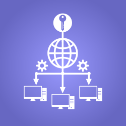 How does remote access software work